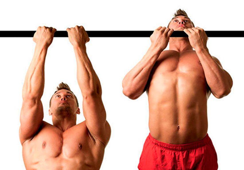 Подтягивание узким хватом | техника и какие мышцы работают