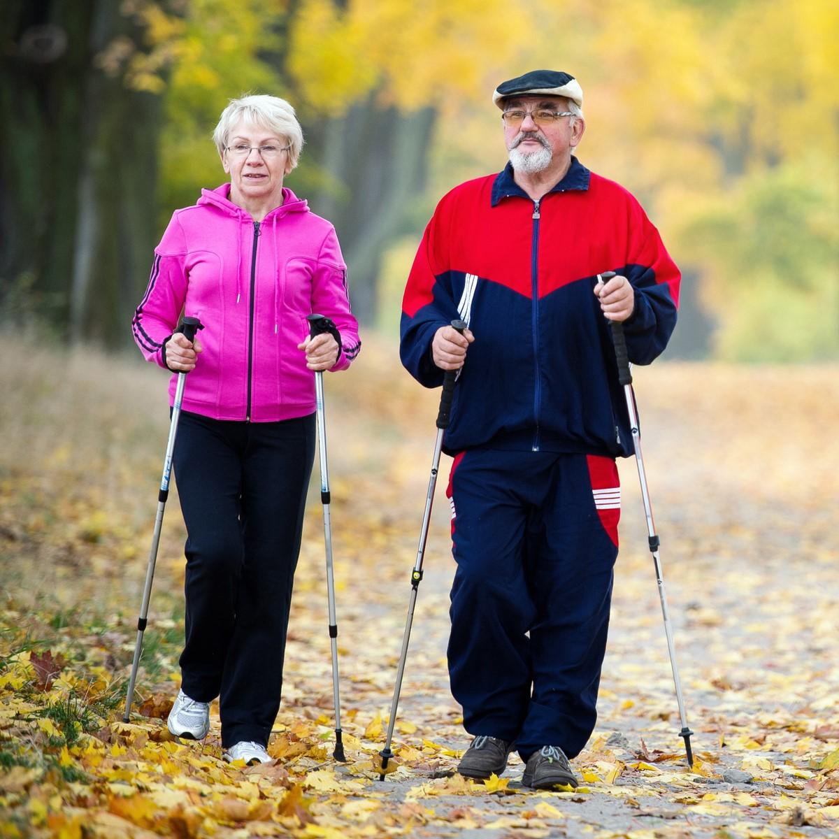Скандинавская ходьба с палками техника ходьбы для пожилых